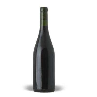 szőke sauvignon blanc 2019