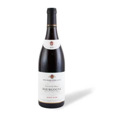 Bouchard Père & Fils Pinot Noir 2019