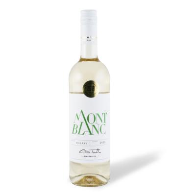 günzer tamás mont blanc 2019
